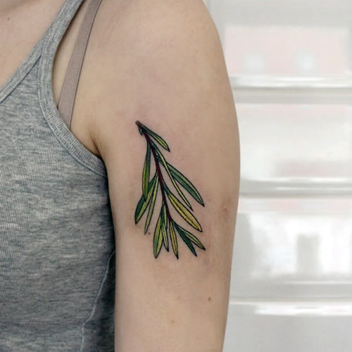 This is a beautiful and fresh plant tattoo pattern, the leaves are very beautiful, fresh and bright! This set of patterns is portrayed in a very fresh tattoo technique, which really makes us not like it!