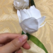 Make a rose with a piece of paper