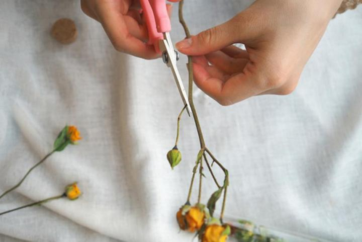 dried flower ideas