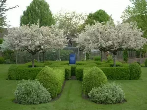 Courtyard design|garden, courtyard design