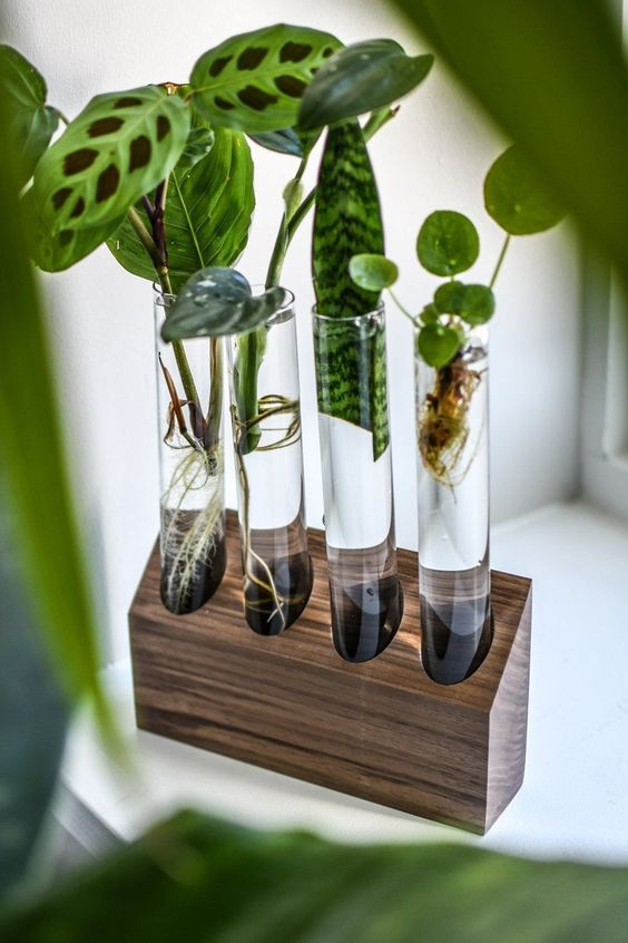 25 DIY Test Tube Vase Crafts Ideas