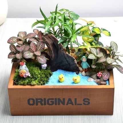 Micro-landscape DIY   The world is big, this small world can create your ideal kingdom