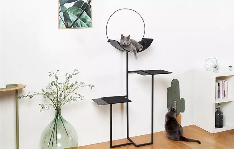 Creative Dog and Cat Bed Ideas We Love   #cat #dog #ideas #Creative