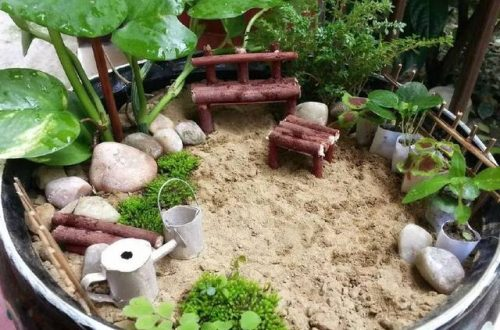 Micro-landscape DIY | The world is big, this small world can create your ideal kingdom