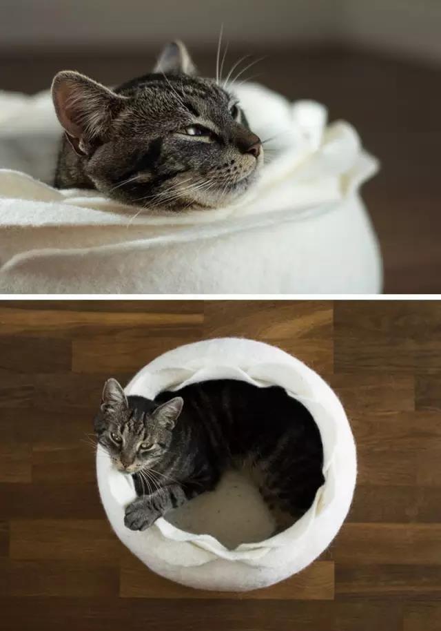 Creative Dog and Cat Bed Ideas We Love | #cat #dog #ideas #Creative